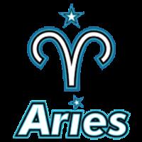 Aster.Aries Team DOTA 2