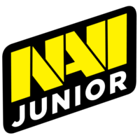 Команда NAVI Junior CSGO