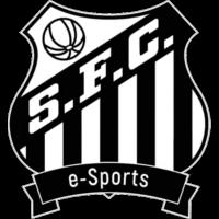 Santos e-Sports Team CSGO