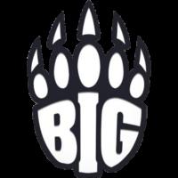 BIG Team CSGO