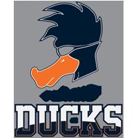 Playing Ducks  Team CSGO