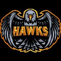 Команда Hawks CSGO