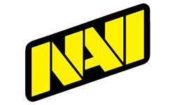 Natus Vincere Team DOTA 2