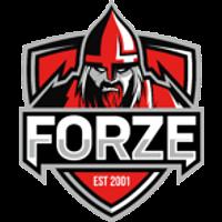 forZe Team CSGO