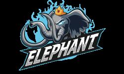 Elephant Team DOTA 2