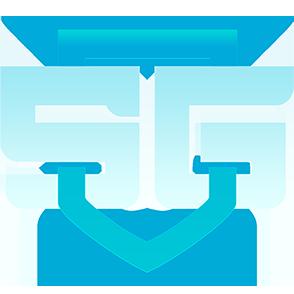 SG e-sports Team DOTA 2